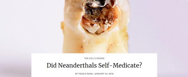neanderthalselfmedicate