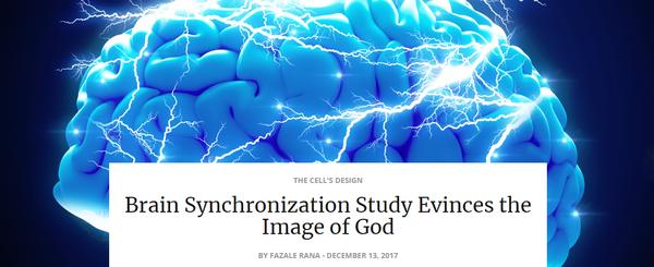 brainsynchronization study