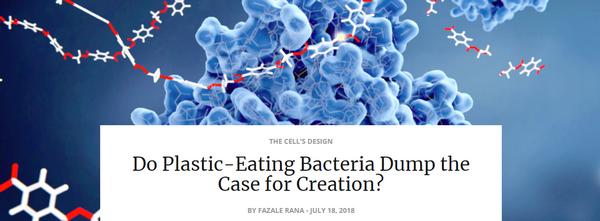 doplasticeatingbacteria