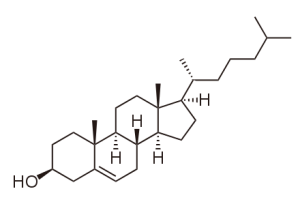 fossil-asscociated-cholesterol-2