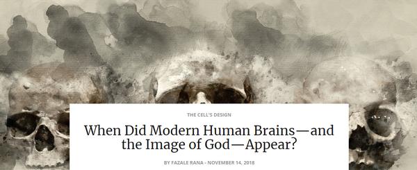 modernhumanbrains