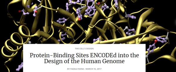 proteinbindingsitesencoded