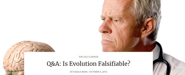 qaisevolutionfalsifiable