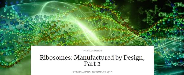 ribosomesmanufacturedbydesign