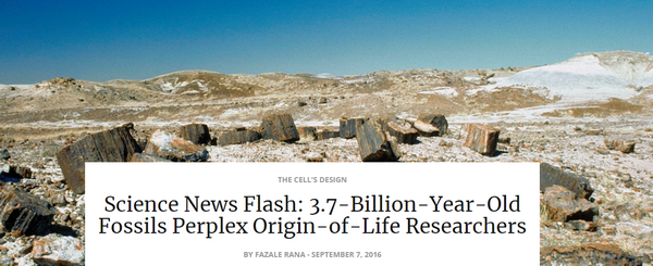 sciencenewsflash3.7billionyearoldfossils