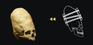 skullfigure1
