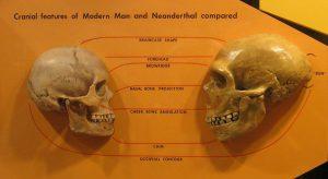 skullfigure3