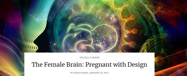 thefemalebrainpregnant